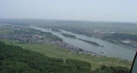 Wald-Weinberge-Fluss Rhein und Häuser
