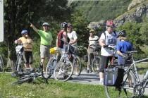 Fahrräder Leute Wiese Bäume